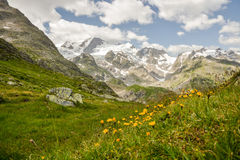 Stein Glacier in Swiss Alps royalty free stock image