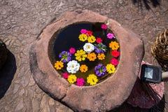 Stein gut mit bunter Blume Stockbild