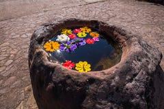 Stein gut mit bunter Blume Stockfotografie