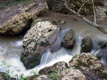 Stein im Fluss Stockbild