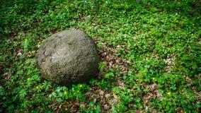 Stein im Gras Lizenzfreies Stockfoto