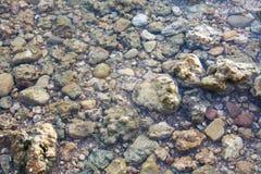 Stein im klaren Wasser. Stockbild