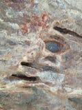 Stein im Meer Stockbild