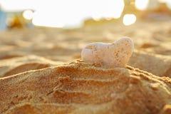 Stein im Sand auf dem Strand Stockfotografie