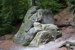 Stein im Wald Lizenzfreies Stockfoto