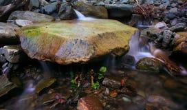 Stein im Wasser Stockfotografie