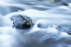 Stein mit Herbstlaub lizenzfreie stockfotografie