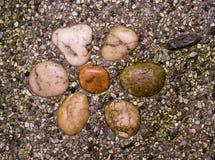 Stein mit sieben Kieseln Stockfotos