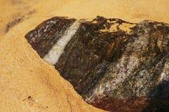 Stein mit weißer Linie auf Sandstrand in Sri Lanka lizenzfreies stockfoto