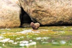 Stein setzte den Fluss wie ein Herz Lizenzfreie Stockbilder