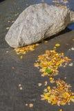 Stein und Autumn Leaves On The Water Lizenzfreies Stockbild