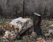 Stein und Holz stockfotografie