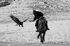 Steinadlerfestival im Winter schneebedeckte Mongolei Lizenzfreie Stockfotos