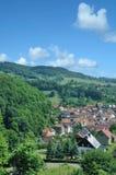 Steinbach i den thuringian skogen, Thüringen, Tyskland Arkivbilder