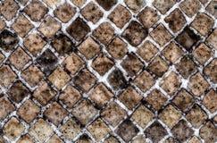 Steinbacksteinmauer-Beschaffenheit, verwendet möglicherweise als Hintergrund Lizenzfreie Stockfotos