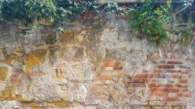 Steinbacksteinmauer-Tapeten-Hintergrund-Beschaffenheit mit grünen Blättern und Sun-Strahlen Schließen Sie oben von den alten gelb stockbilder