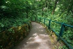 Steinbahn-Gehweg-Weg-Weg mit grünen Bäumen und Büschen in P Lizenzfreie Stockfotos