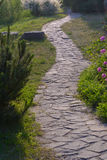 Steinbahn nahe Bäumen und Blumen in Garten während der Tageszeit stockbilder