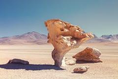 Steinbaum, dem ein Naturdenkmal erklärt wurde, gelegen in der Wüste von Siloli, südwestlich Boliviens stockfotos