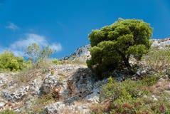 Steinberge und blauer Himmel mit Wolken Lizenzfreie Stockfotografie