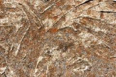 Steinbeschaffenheit Stockbild