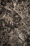 Steinbeschaffenheit auf Wand als Hintergrund Stockfotografie