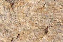 Steinbeschaffenheit - Hintergrund lizenzfreie stockbilder