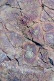 Steinbeschaffenheit mit Mustern von Kreisen Stockfotos