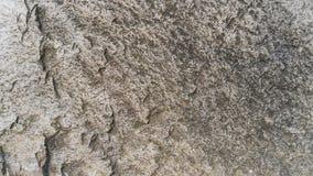 Steinbeschaffenheits-Hintergrund Miekinia-Porphyr Lizenzfreies Stockfoto