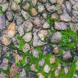 Steinboden mit Elchen Lizenzfreie Stockfotografie
