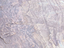 Steinbodenbeschaffenheit im Garten Lizenzfreie Stockfotos