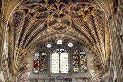 Steinbogen-Buntglas-Statuen-neue Salamanca-Kathedrale Spanien Stockfotografie