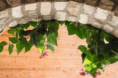 Steinbogen mit den Blumen und Blätter, die unten sinken und heller hölzerner Hintergrund - Raum für Kopie stockbilder