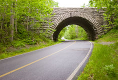 Steinbogenpferdenwagen bridgeAcadia nationales PA Lizenzfreies Stockbild