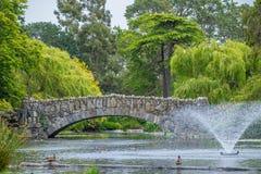 Steinbrücke über Teich mit Wasserbrunnen im Park Lizenzfreies Stockbild