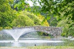 Steinbrücke über Teich mit Wasserbrunnen im Park Stockbild