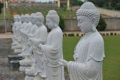 Steinbuddha-Statuen Stockfoto