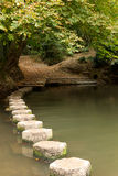 Steine über dem Fluss Stockbilder