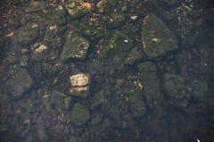 Steine auf dem Flussgrund schärfe Stockfoto