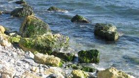 Steine auf dem Ufer Stockbilder