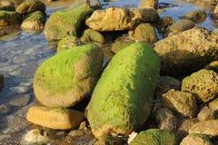 Steine auf der Küste lizenzfreie stockbilder