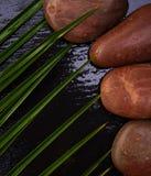 Steine auf einem schwarzen Hintergrund Stockbilder