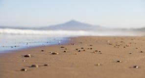 Steine auf sandigem Strand lizenzfreie stockfotografie