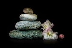 Steine auf schwarzem Hintergrund Stockbild