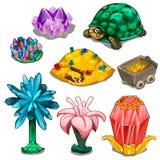 Steine, Berge des Goldes, Schildkröten und Blumen Stockbilder