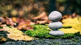 Steine in der Natur, Herbstbilder Stockbild