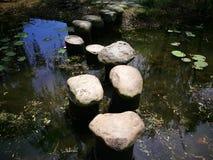 Steine, die einen Weg im Wald konstruieren stockfoto