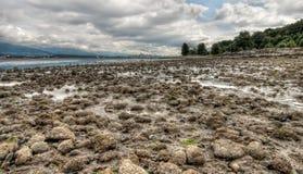 Steine, die zu Vancouver-Skyline führen Lizenzfreies Stockfoto