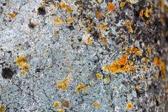 Steine, Felsen, Sand Stockbild