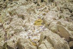 Steine im Fluss bei Suratthani Lizenzfreie Stockfotos